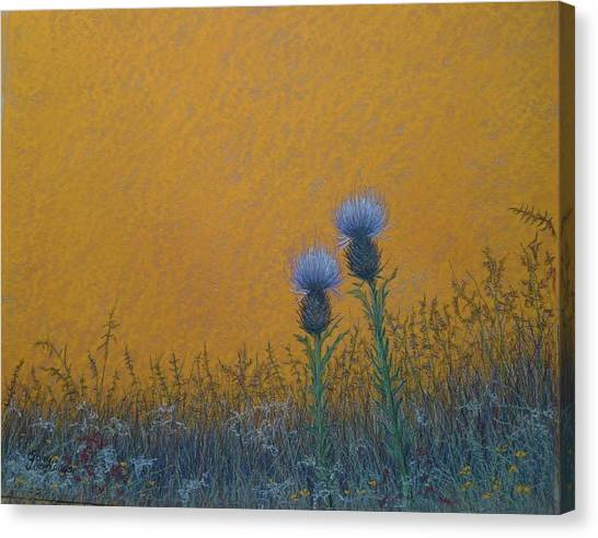 Orange Sky With Thistle Canvas Print