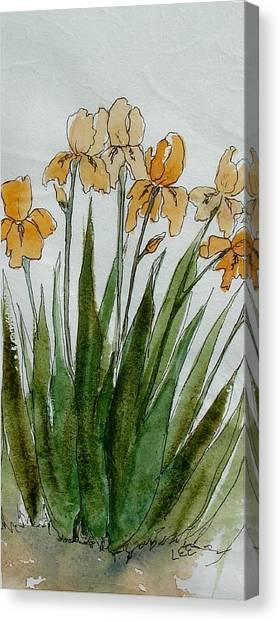 Orange Sprng Canvas Print