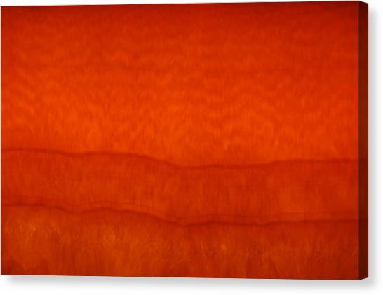 Orange Stone 3 Canvas Print