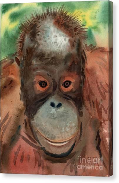 Orangutans Canvas Print - Orangutan by Donald Maier
