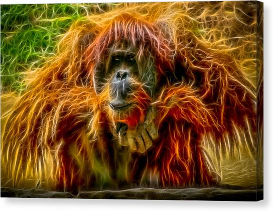 Orangutan Inspiration Canvas Print