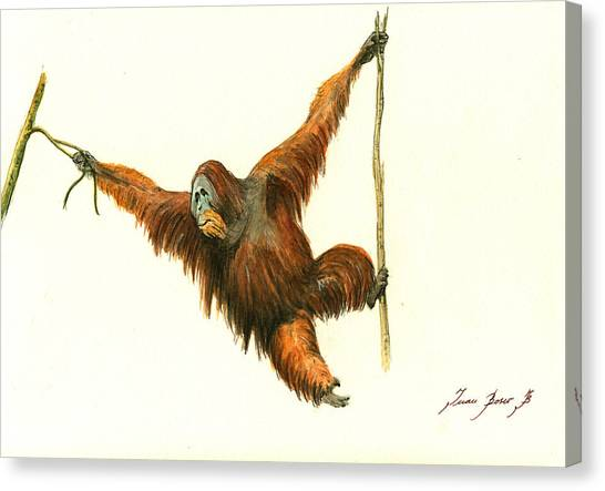 Monkeys Canvas Print - Orangutan by Juan Bosco