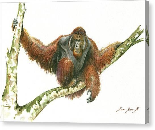 Orangutans Canvas Print - Orangutang by Juan Bosco