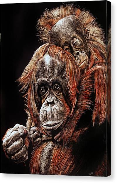 Orangutans Two Canvas Print