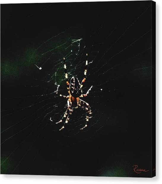 Orb Weaver Canvas Print