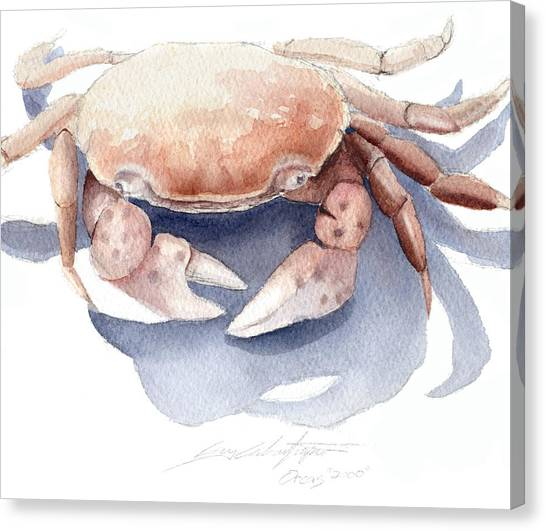 Orcas Crab Canvas Print