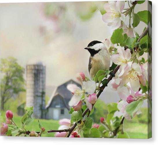 Wild Orchards Canvas Print - Orchard Visitor by Lori Deiter