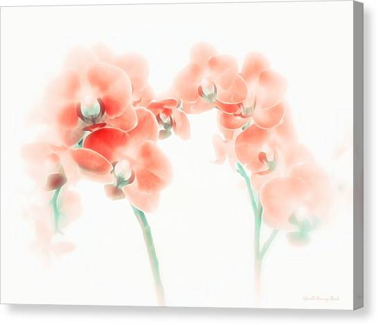 Orchid Collection 'soft Red' Canvas Print