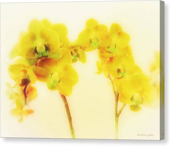 Orchid Collection 'summer' Canvas Print