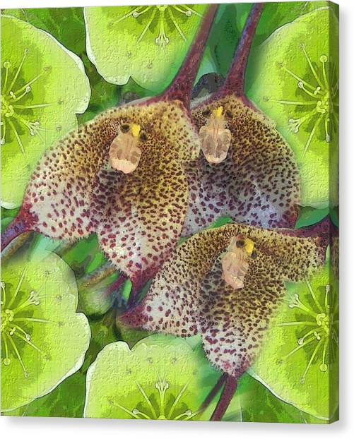 Orchid Monkeys Canvas Print