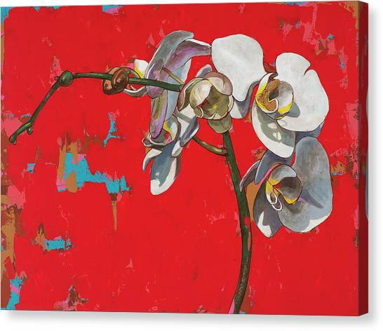Orchids Canvas Print - Orchids #1 by David Palmer