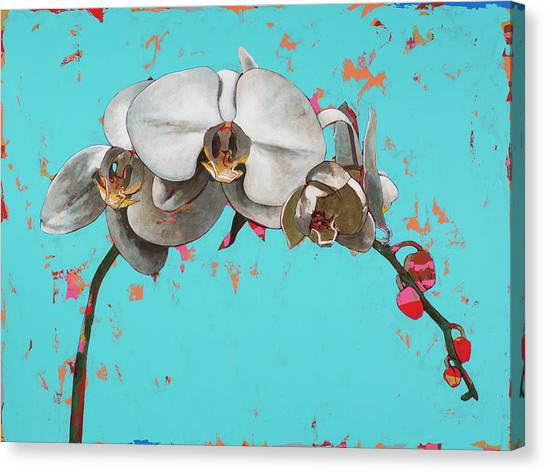 Orchids Canvas Print - Orchids #5 by David Palmer