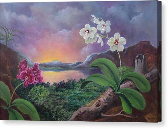 Phalenopsis Canvas Print - Orchids And Mystery by Randy Burns