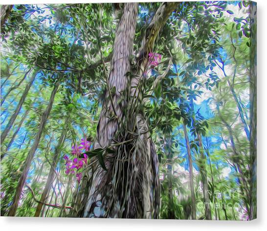 Orchids In A Tree Canvas Print
