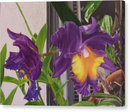 Orchids Canvas Print by Robert Silvera
