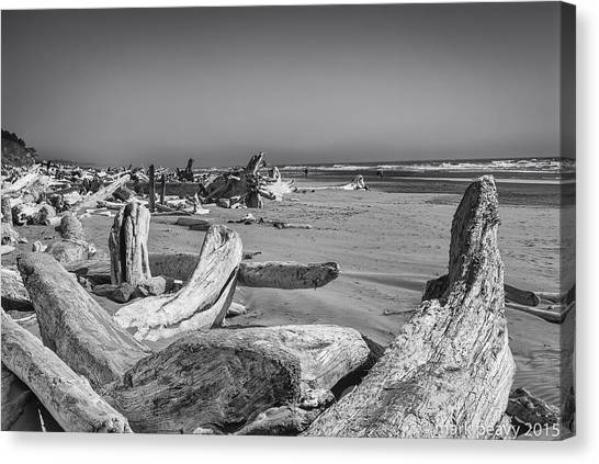 Oregon Beach Driftwood Canvas Print