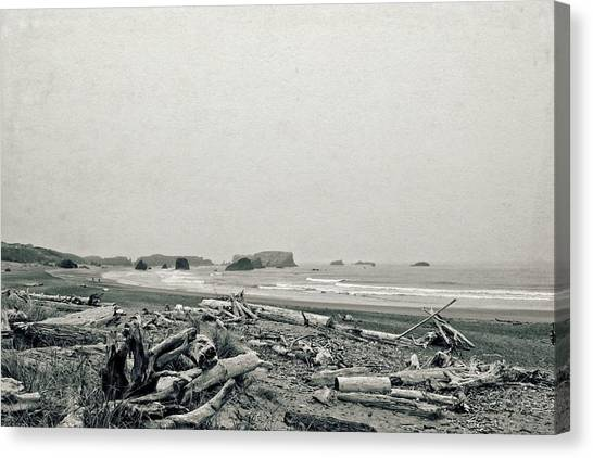 Oregon Beach With Driftwood Canvas Print