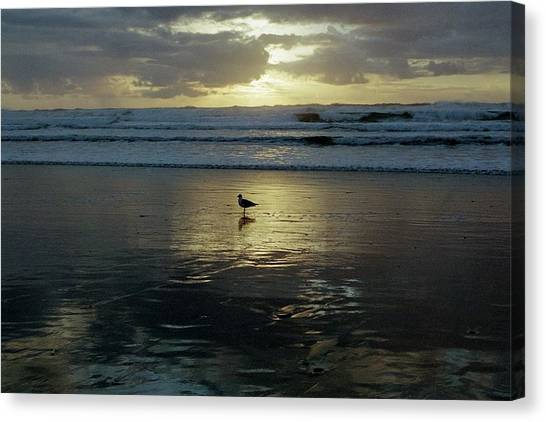 Oregon Coast 3 Canvas Print