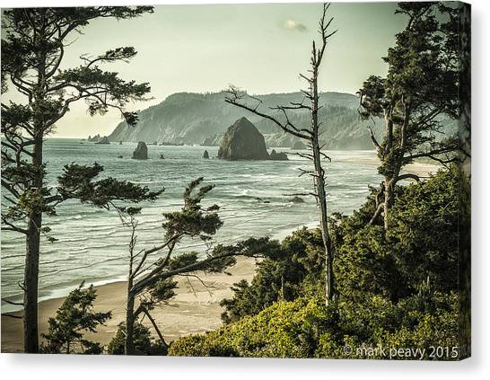 Oregon Coast At Sunset Canvas Print