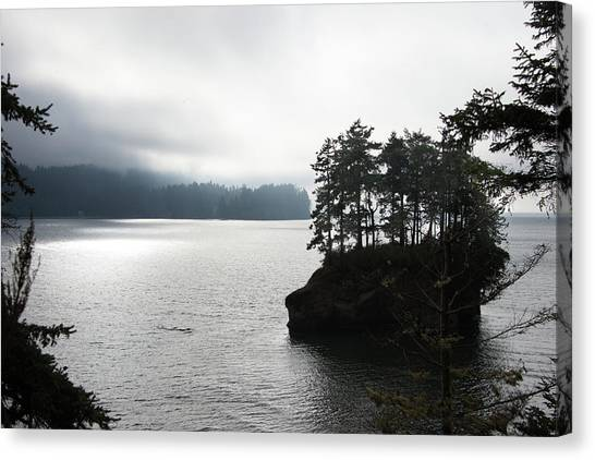 Oregon Coast Fog Canvas Print