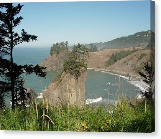 Oregon Coast Near Brookings Canvas Print