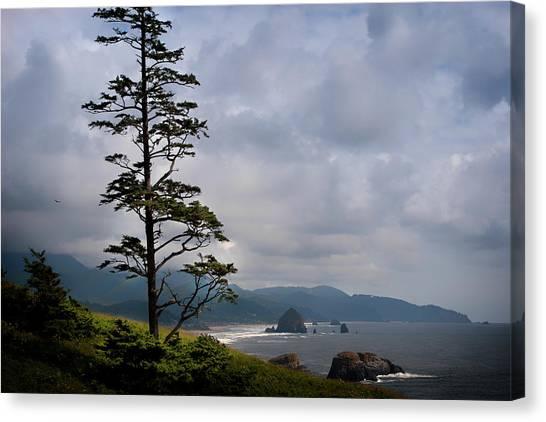 Oregon Ocean Vista Canvas Print