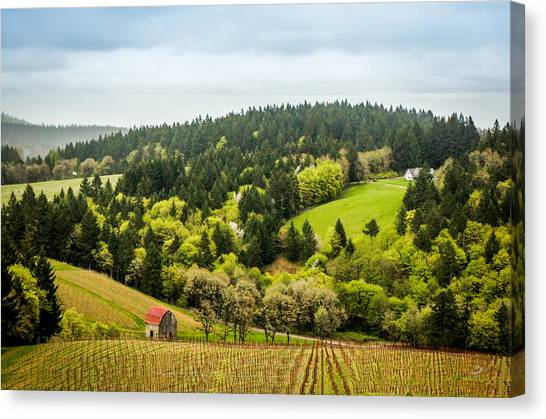 Oregon Wine Country Canvas Print