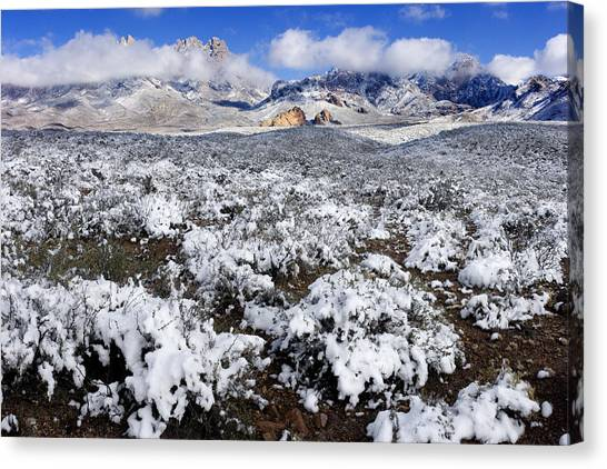 Organ Mountains With Snow Canvas Print by Patrick Alexander