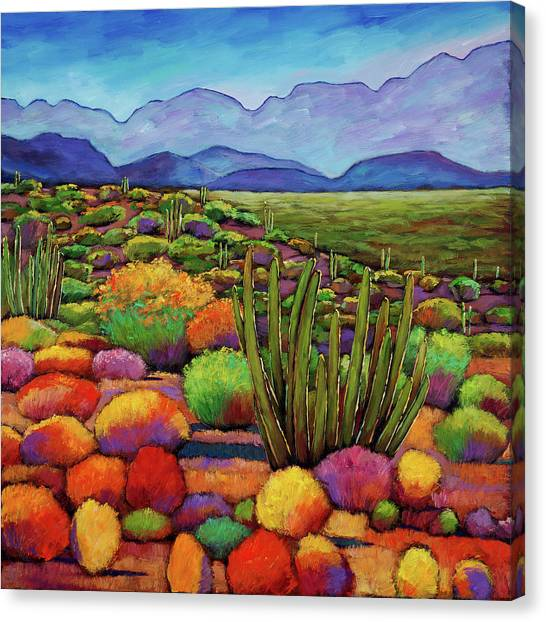 Colorful Canvas Print - Organ Pipe by Johnathan Harris