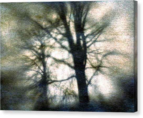 Original Tree Canvas Print by Diana Ludwig