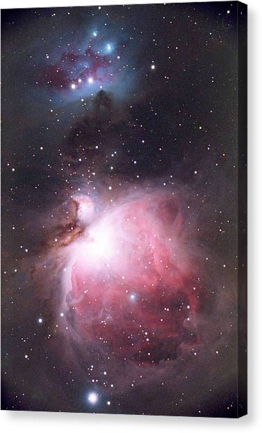Stellar Canvas Print - Orion Nebula by Chris Madeley