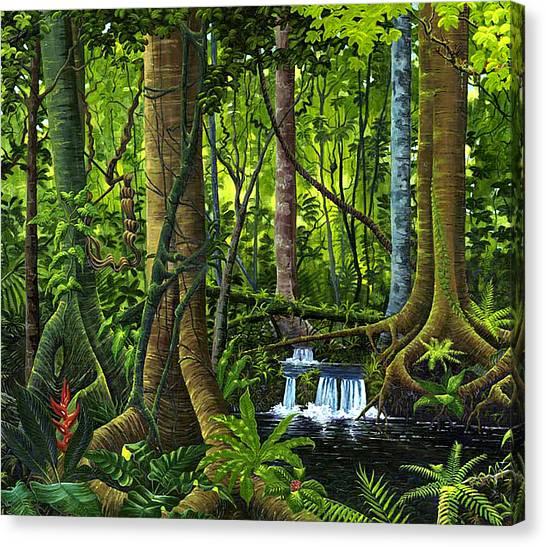 Osa Peninsula Rainforest Canvas Print