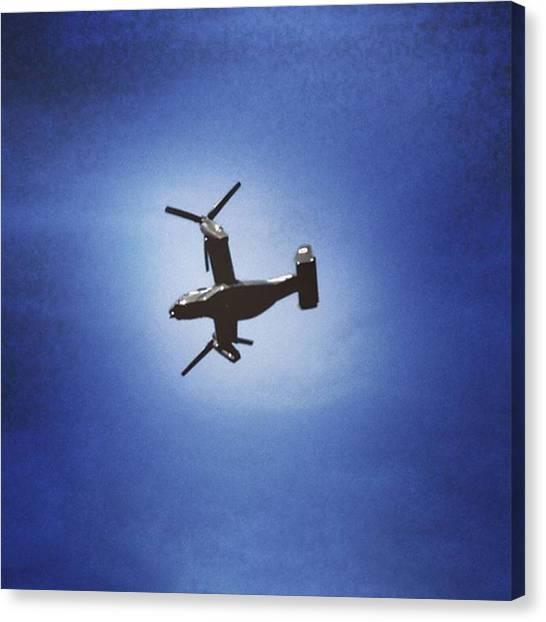 Osprey Canvas Print - #osprey by Craig Uszak