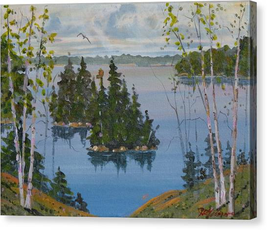 Osprey Island Study Canvas Print