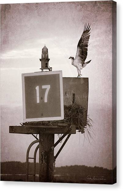 Osprey Landing On Channel Marker 17 Canvas Print