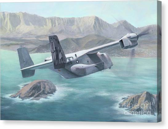 Osprey Over The Mokes Canvas Print