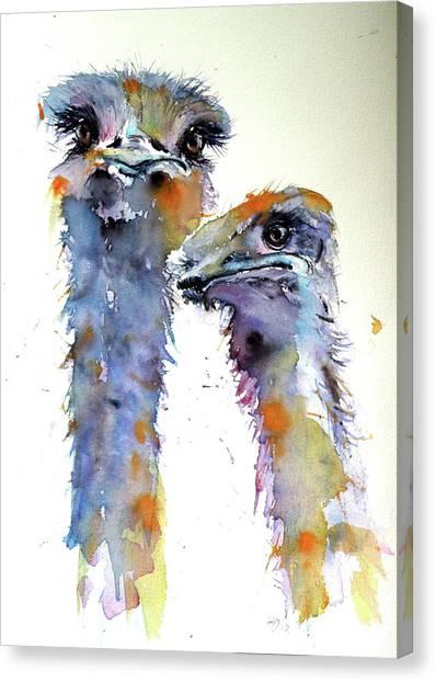 Ostriches Canvas Print - Ostriches by Kovacs Anna Brigitta