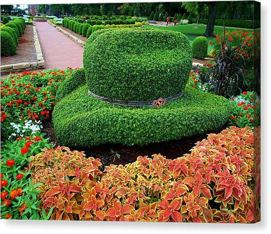 Oklahoma State University Canvas Print - Osu Cowboy Hat Shaped Hedge by Buck Buchanan