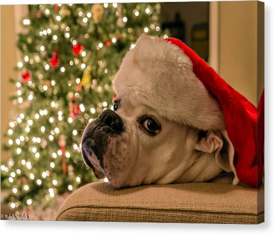 Otis Claus Canvas Print