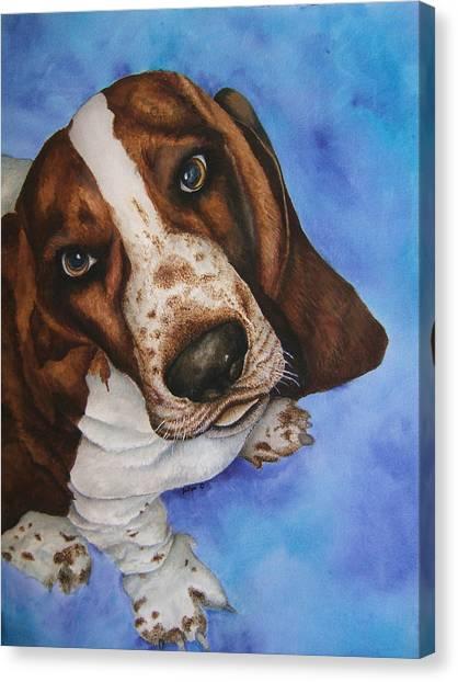 Otis The Basset Hound Canvas Print by JoLyn Holladay