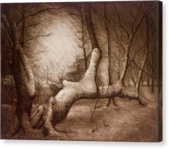 Otsiningo Park Binghamton Ny Canvas Print by John Clum