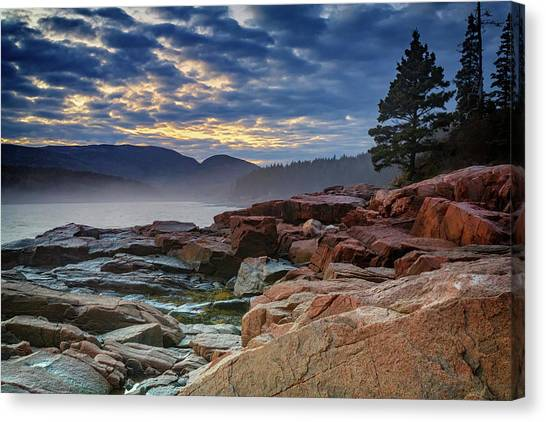 Otters Canvas Print - Otter Cove In The Mist by Rick Berk