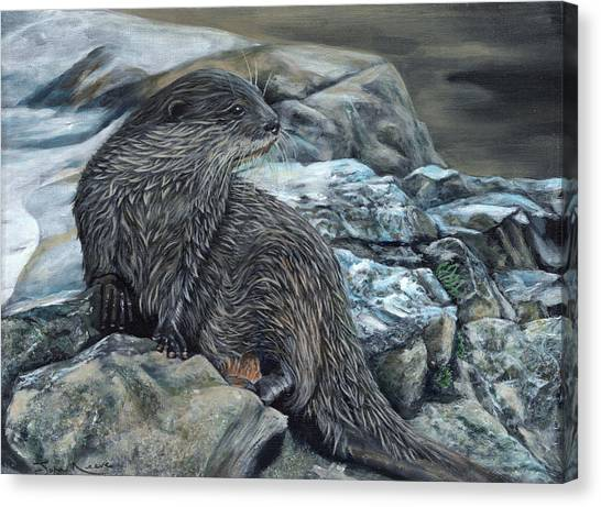 Otter On Rocks Canvas Print