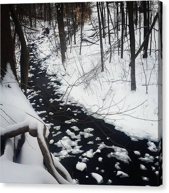 Ivory Canvas Print - Out For A Walk... #snowday #hike by Ivory Scinto