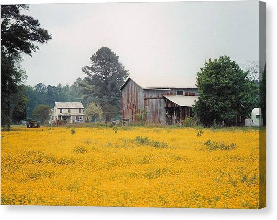 Out In The Country Canvas Print by Robert Boyette