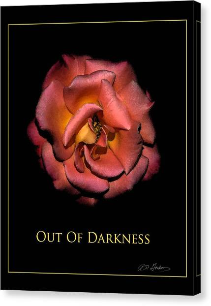 Out Of Darkness Canvas Print by Richard Gordon