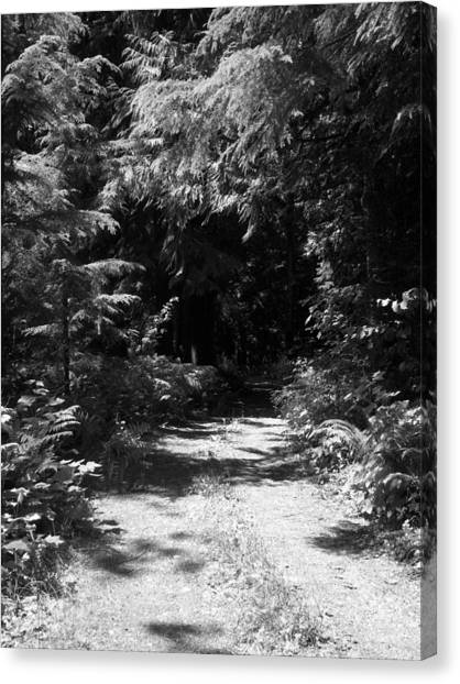 Out Of The Into The Dark Bw Canvas Print by Ken Day