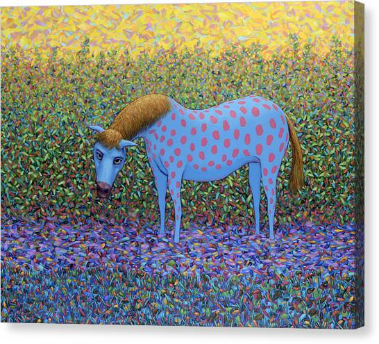 Texas Wildflowers Canvas Print - Out Of The Pasture by James W Johnson