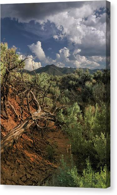 Out On The Mesa 2 Canvas Print