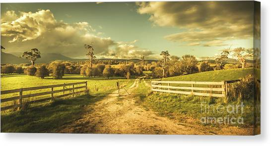 Driveway Canvas Print - Outback Country Paddock by Jorgo Photography - Wall Art Gallery